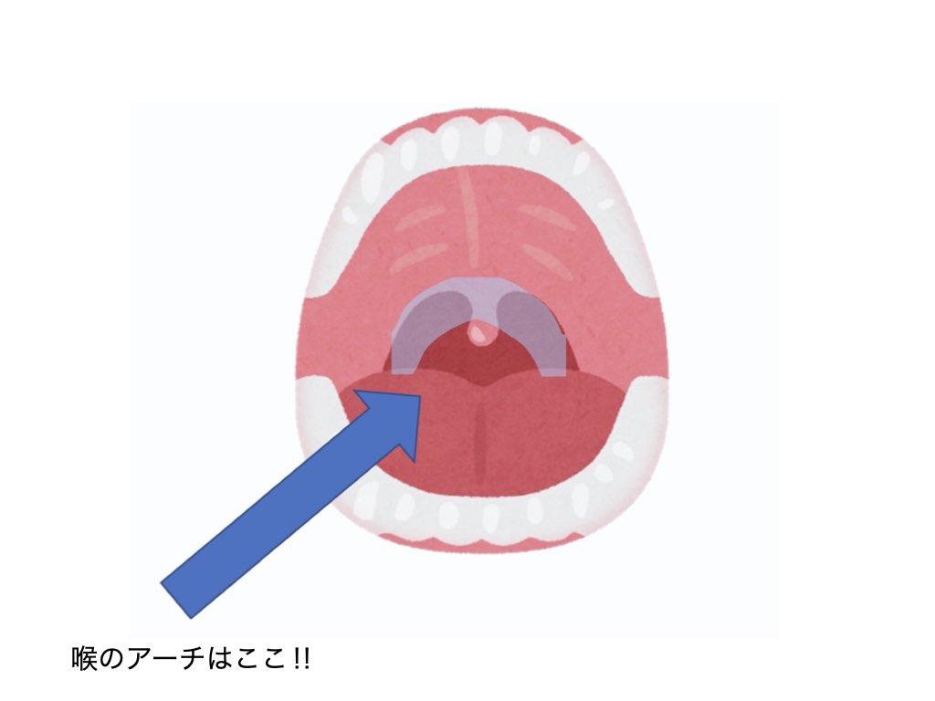 喉 アーチ ボーカル ヴォーカル 歌がうまくなる 簡単 入門 基礎 練習法